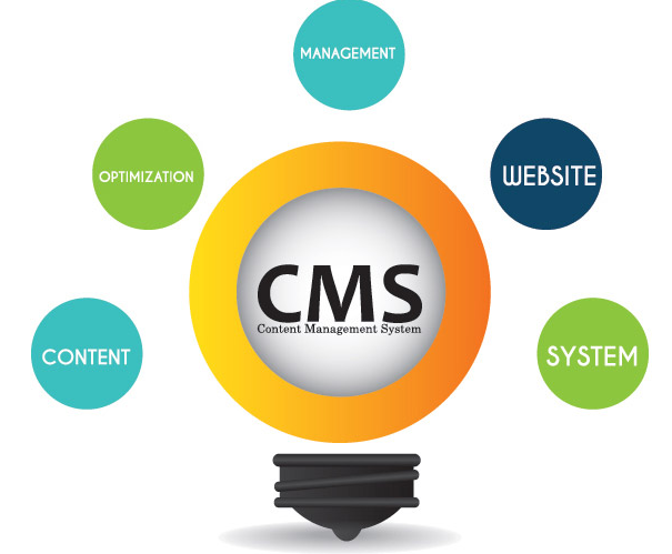 Lightbulb with CMS inside with words outside representing what a CMS does